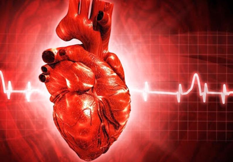 Как предупредить прединфарктное или прединсультное состояние